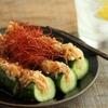 花椒好きホイホイ「漬けないオイキムチ風きゅうり」のレシピ。写真で見るよりうんとシビ辛にできます