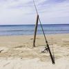 鳥取でキス釣りしよう!北栄町と琴浦町でファミリーにもおすすめキス釣りスポットをご紹介します!