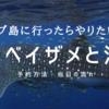 セブ島【セブプレ】ジンベイザメ&スミロン島&ツマログ滝ツアーに参加!予約方法と当日の流れ