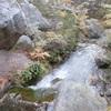 チリ  -トーレス・デル・パイネ国立公園3日目-