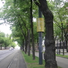 ウイーン~ リング通りを歩く