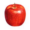 「りんご」と脳細胞の増加