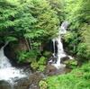 深緑に染まる龍頭ノ滝へ