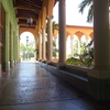 【マイアミ】高級住宅街コーラルゲーブルズとビルトモアホテル