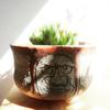象嵌達磨図鉢 X「青雲の舞」