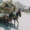 ひとり旅201003  1984年のChina 3  広州 泥棒 公安 領事館