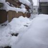 今年は雪がすごいですね、という話