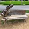 【兵庫】丹波市 おもしろ観光スポット♫ 恐竜好きの方必見! 丹波竜の里と大自然をご紹介♫