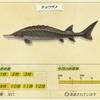『あつまれ どうぶつの森』チョウザメを釣り上げ時の流れを感じた発売日組