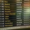 オランダからの 日本里帰り事情  2