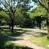 『ポケモンGO』 岐阜公園でブーバー&柳ケ瀬商店街にストライクの影