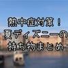 【熱中症対策】夏ディズニーの持ち物徹底解説!