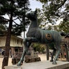 藤森神社|競馬ファンやホースマンが集う勝運と馬の神社で勝負運を高めよう!