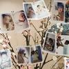 赤ちゃんの写真のアルバムはどれにしよう?ファーストアルバムにおすすめのアルバム5選紹介します!!
