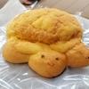 須磨海浜水族園 うみがめのお店 うみがめのメロンパンを食べた