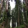 比内町大日神社