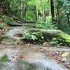【最新版】鎌倉 トレイルランニングのルールとマナーまとめ