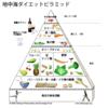 「地中海料理ピラミッド」と「食事バランスガイド」