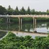 南山公園の池(千葉県白井)