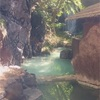 濃い硫黄で温冷浴!成分良し、飲んで良し、赤川温泉!!