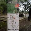 松濤園の一般公開に行ってきました!