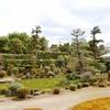 庭園37 建仁寺塔頭久昌院 建仁寺の堂宇と東山を望む庭園