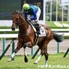 タコイチの【今週の勝負レース】アイビーS!