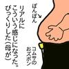 ぽんぽんが大きめ息子の成長記、2歳8か月。