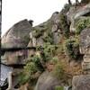 【広島、尾道】【御朱印】『千光寺』に行ってきました。国内旅行 国内観光 女子旅 主婦ブログ 御朱印帳