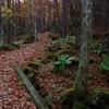 晩秋の八ヶ岳 八千穂高原自然園を歩く