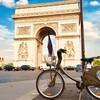 【フランス】フランスのシェアサイクルが使える都市10選