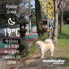 Instaweather:2018-03-26〜03-31