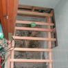 トイレ修理3−1(和洋兼用便器→洋風腰掛けに改造)
