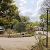 近場を散歩 - 馬場花木園
