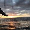 1月12日 初釣り(名立沖タイラバ )