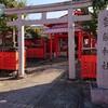 JK娘の京都神社の楽しみ方♪ジャーニーズ愛が止まらない(^▽^)/芸能神社・平野神社