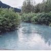 キーナイ半島の自然 2006年8月16日
