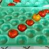 小さいトマト用のフィット感抜群ホールトレー