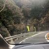 四国徳島カピバラ旅行〜その3:そこは山の奥深くの秘湯だった