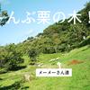 宮城県で栗拾い!涌谷町観光栗園で子供と秋を満喫