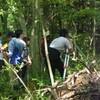 自然環境学実習II
