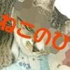 ねこさま好きにおすすめ本、グッズ、おやつなどを猫の日にあやかって22個厳選してみたよ!