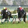 タコイチの【勝負レース回顧】!