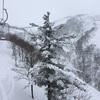 いい雪が降り続いています。【白馬八方尾根スキー場】