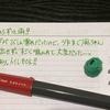 【万年筆・インク】妻のねこ日記・2020年10月第4週!【猫写真と猫イラスト】