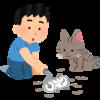 モフモフ猫ちゃんの抜け毛の話