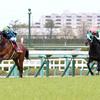 2019阪神大賞典(G2) レース傾向、有力馬分析、平場レース注目馬