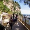 モナコの動物園は動物以外の見所がたくさん?【観光おすすめ情報】