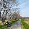 桜を求めて周辺ツーリング