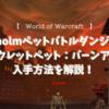 【World of Warcraft】Stratholmのペットダンジョンでゲットできるシークレットペット、バーンアウトの入手方法